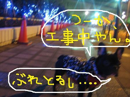 IMG_1401.jpg