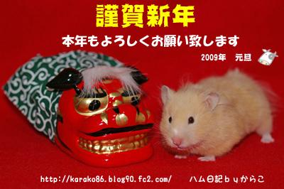 2009nengamomo.jpg