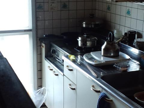 台所にいる!