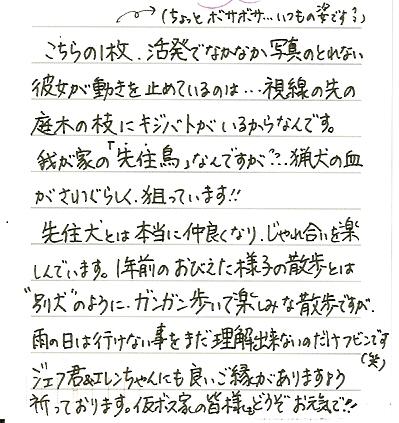 2010-6-14-3.jpg