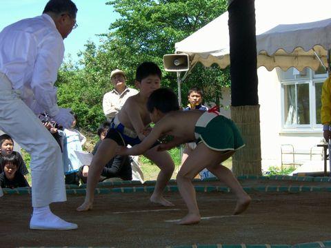 わんぱく相撲 3