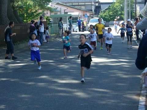 ひまわりマラソン 2