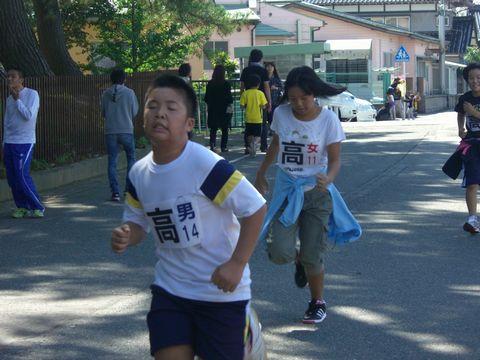 ひまわりマラソン 9