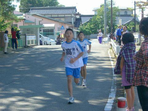 ひまわりマラソン