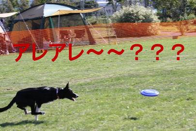 026_20091003023012.jpg