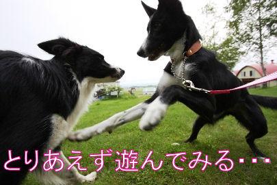 050_20090710095102.jpg