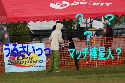 059_20091014182759.jpg