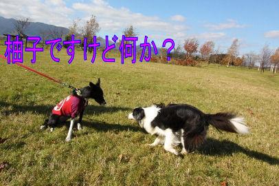 062_20091030034124.jpg