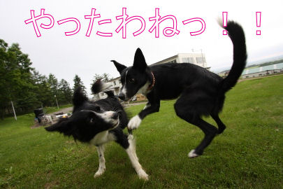 063_20090710095236.jpg