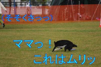 074_20091014182759.jpg