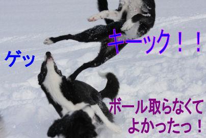 118_20091224093048.jpg
