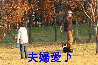 140_20091030034245.jpg