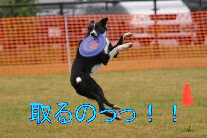 218_20091014193703.jpg
