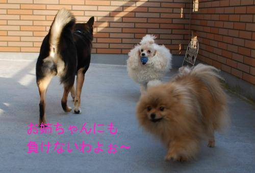 20080108-k_r_a.jpg
