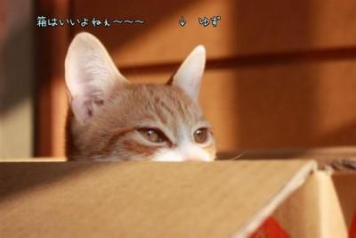 Xd_fjHhO.jpg