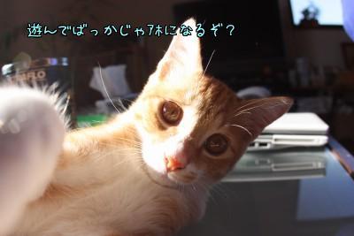 YAp9mhM4.jpg