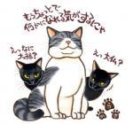 raizou_convert_20081230004035.jpg