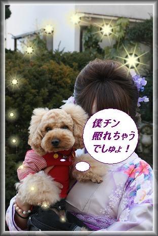 IMG_3234bb1.jpg