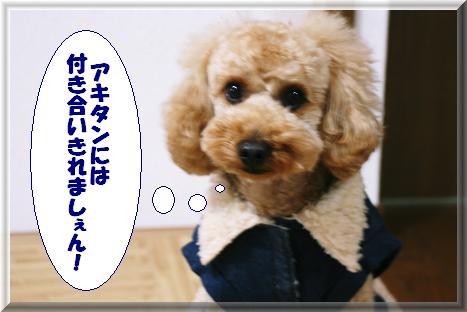 IMG_3547b.jpg