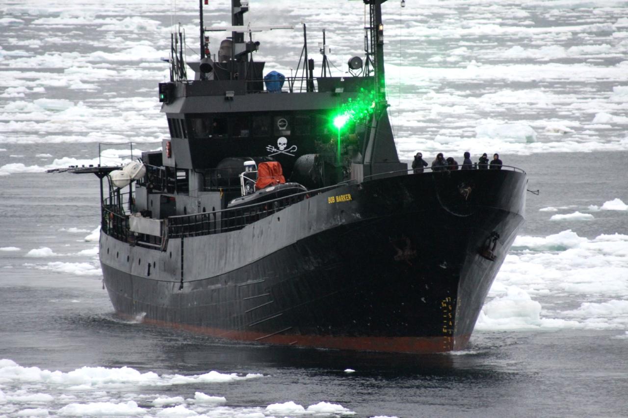 (財)日本鯨類研究所 提供