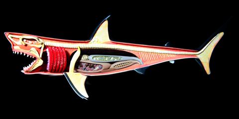 4D VISION ホホジロザメ