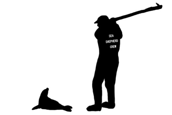 Who killed fur seals?