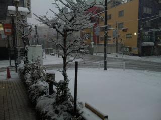 20120229雪景色