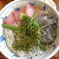 enoshima2.jpg