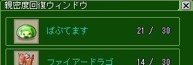 ss20090218_01.jpg