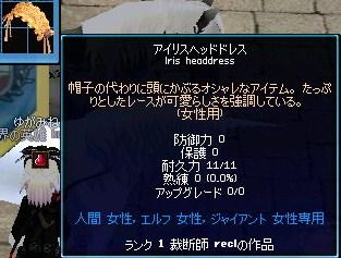mabinogi_2010_01_03_008.jpg