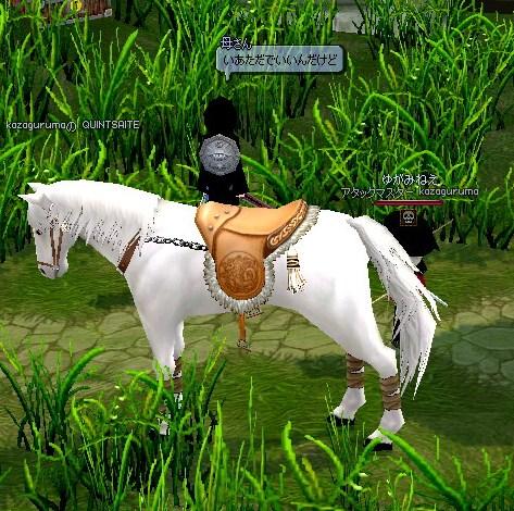 mabinogi_2010_02_08_009.jpg
