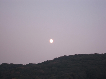 20101220-2