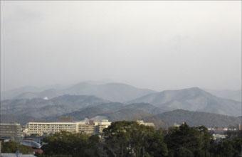 20110116-3