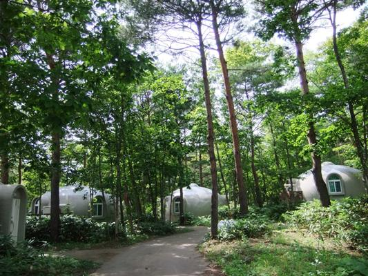 1-8木立の中の建物
