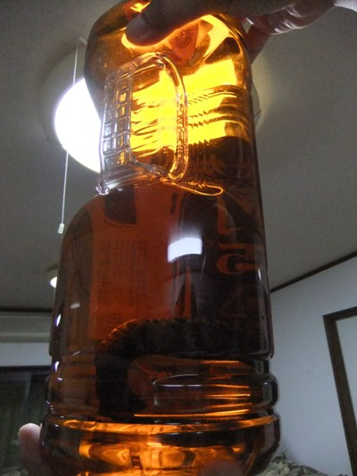 6-5マムシ酒