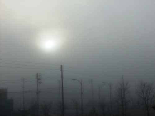 1-8朝靄-2
