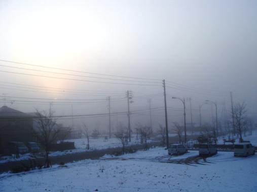 20110128-03.jpg