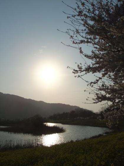 20110424-11.jpg