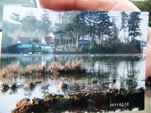 20110503-30震災翌日の写真