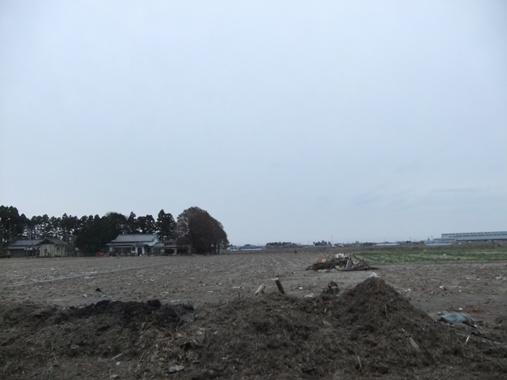 20110503-26家の裏の田圃