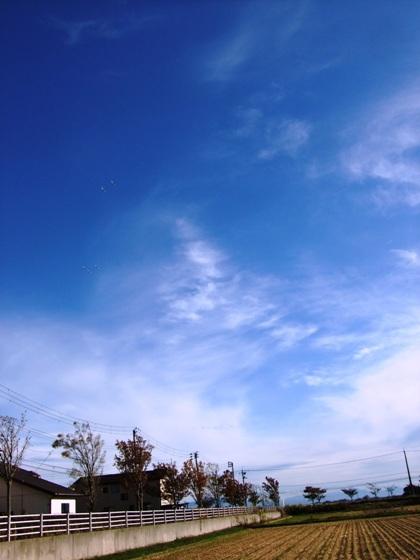 20111022-06.jpg