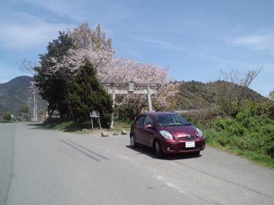 2010 04 14_3421-2