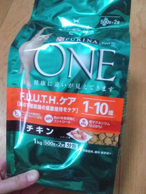 2011 01 25_5346