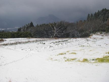 100113雪