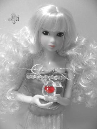 20090213_02.jpg