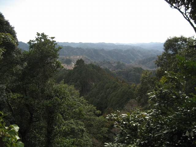 20113074.jpg