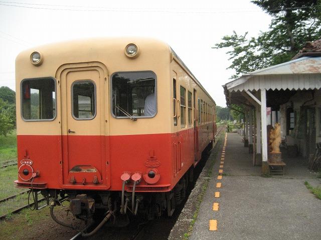 2011655.jpg