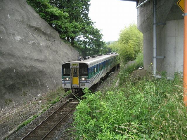 2011656.jpg