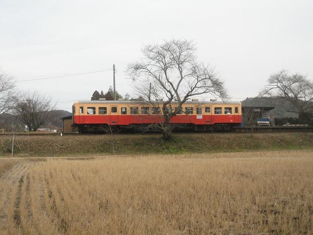 20121153.jpg