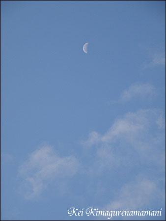 12・20 の朝の月♪